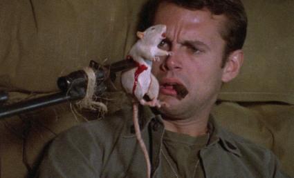 Stryker's gonna git those rat bastards.